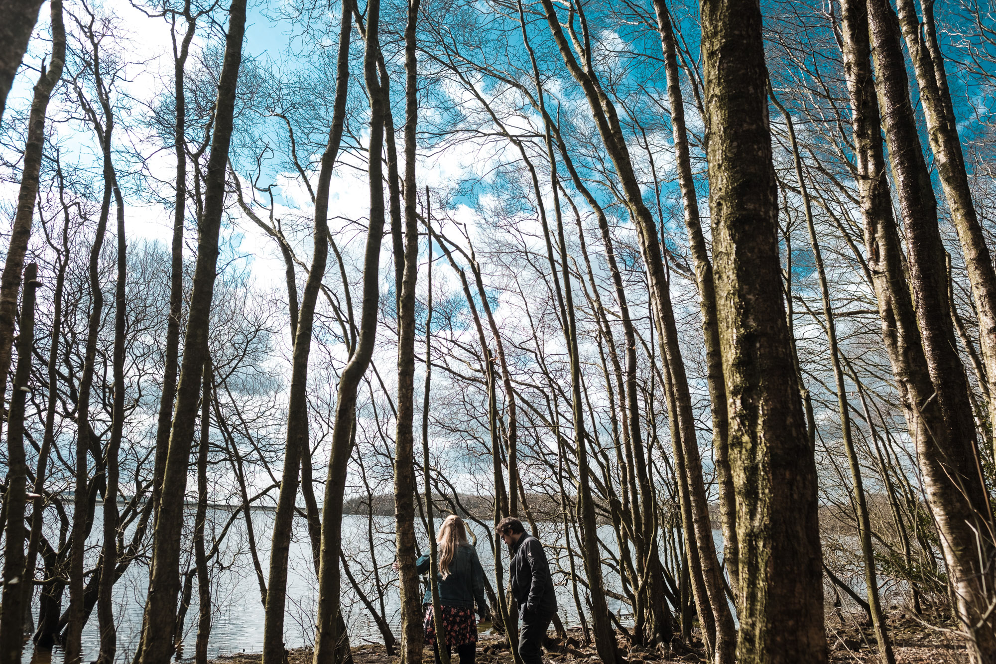 couple walking in between trees with blue sky and clouds