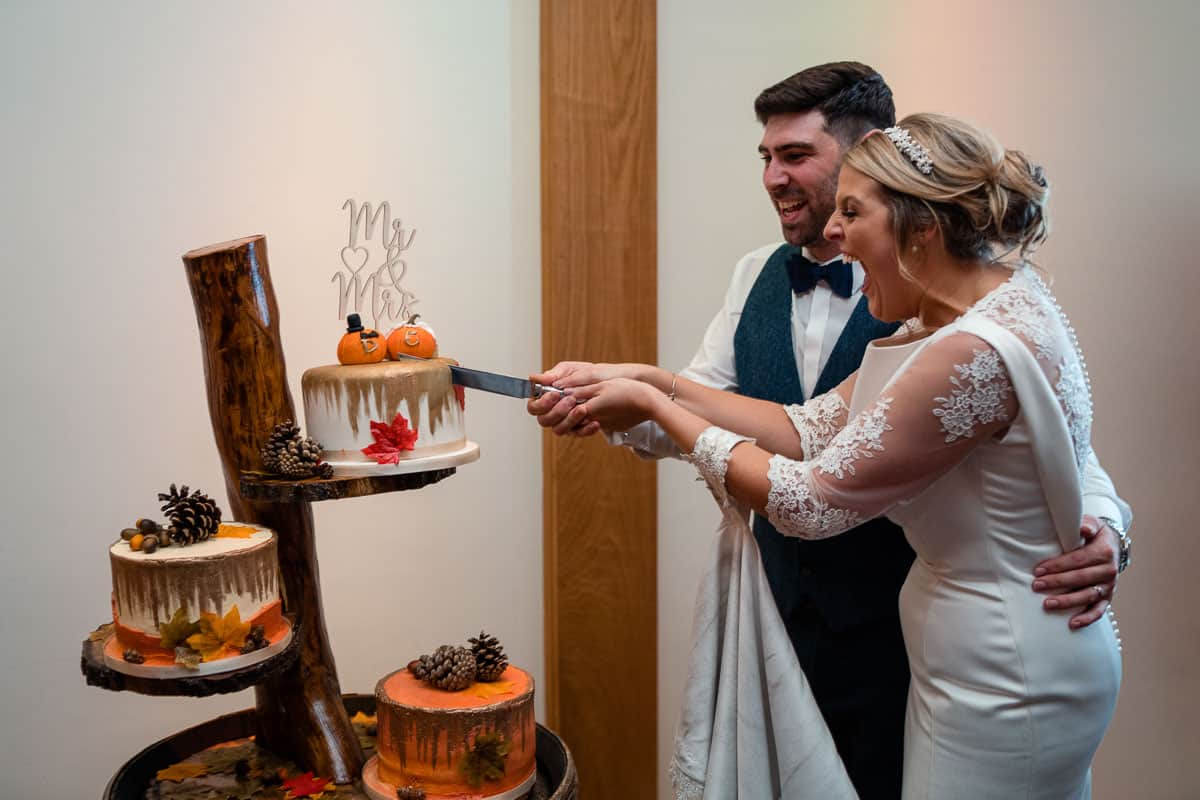 bride and groom butting the wedding cake